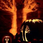 Kugel Baum2