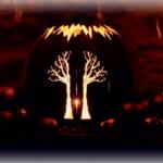 Lichtkugel Baum