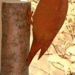 Specht-für-Baumstamm-h30cm-7,90EUR