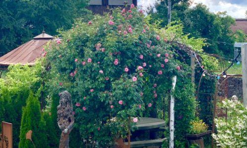 Gartendeko zum Verlieben im Rostgarten